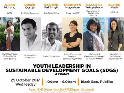 Youth Leadership in Sustainable Development Goals