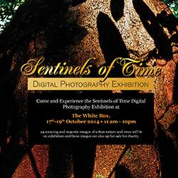 2014 Sentinels of Time Photography Competition Finalists Announced